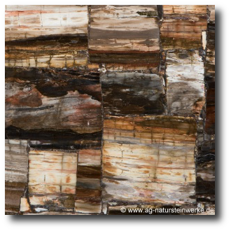 petrified-wood-luxusstein.png